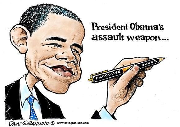 President Obama's assault weapon